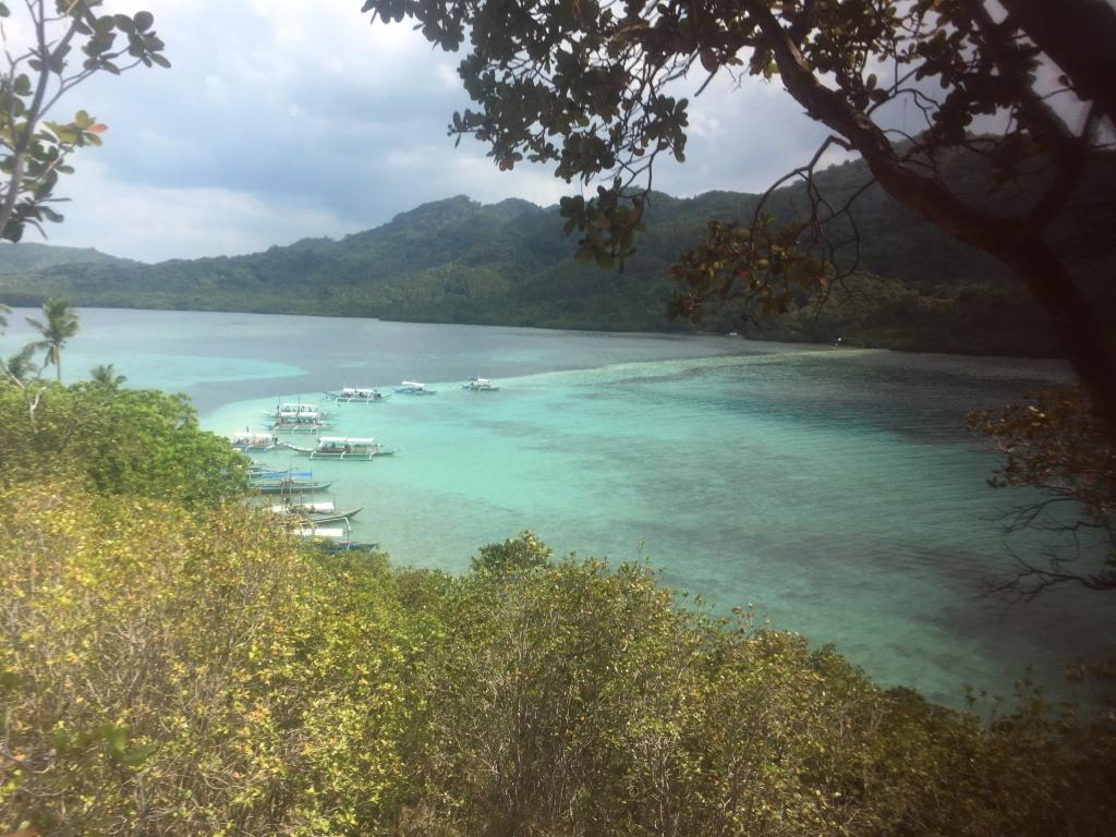 Snake Island raw