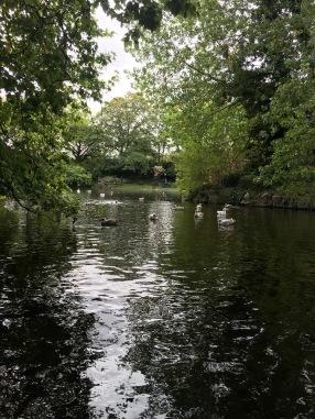 Dublin green park